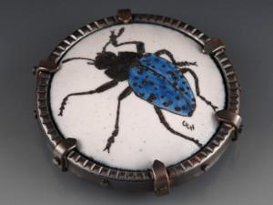 Pleasing Fungus Beetle_2014_cropped
