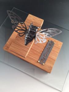 Fly, Cicada, fly!