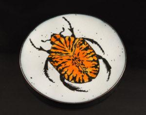 gymnetis-bowl_1_dsc_0083_cropped_small